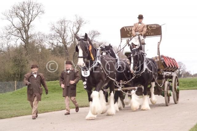 Horse and Harness Show Joe Stuart & Kevin