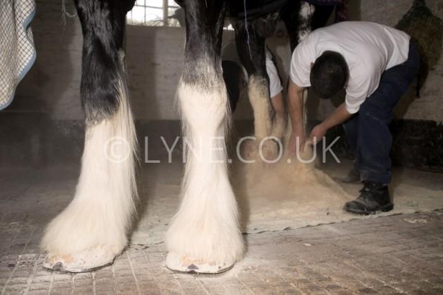 Kevin Flynn Foot drying
