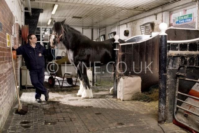 Big Joe & Dray horse Stable Block